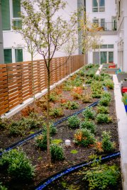 View More: http://jeffandamanda.pass.us/jh-landscaping