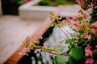 View More: http://jeffandamanda.pass.us/jh-landscaping