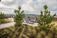 View More: http://jeffandamanda.pass.us/jh-the-commons
