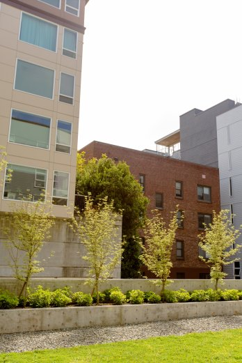 View More: http://jeffandamanda.pass.us/uptown