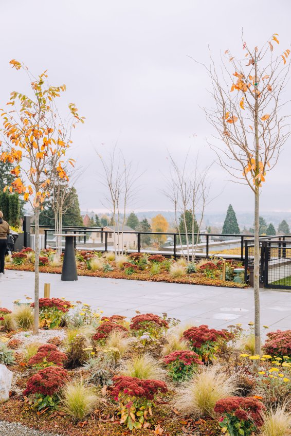 View More: http://jeffandamanda.pass.us/jhland